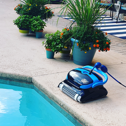 Dolphin Pool Cleaner Review of the Nautilus CC Plus