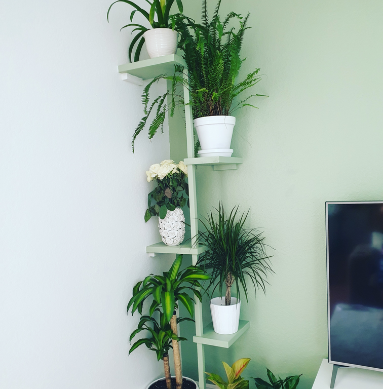 Wooden Indoor Tiered Plant Stand
